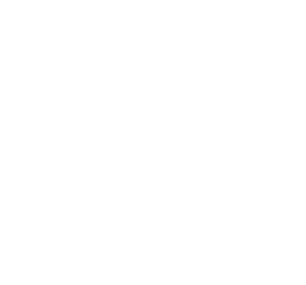Nargis Collections